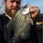 crappie s - Realistic Fishing