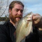 White Bass