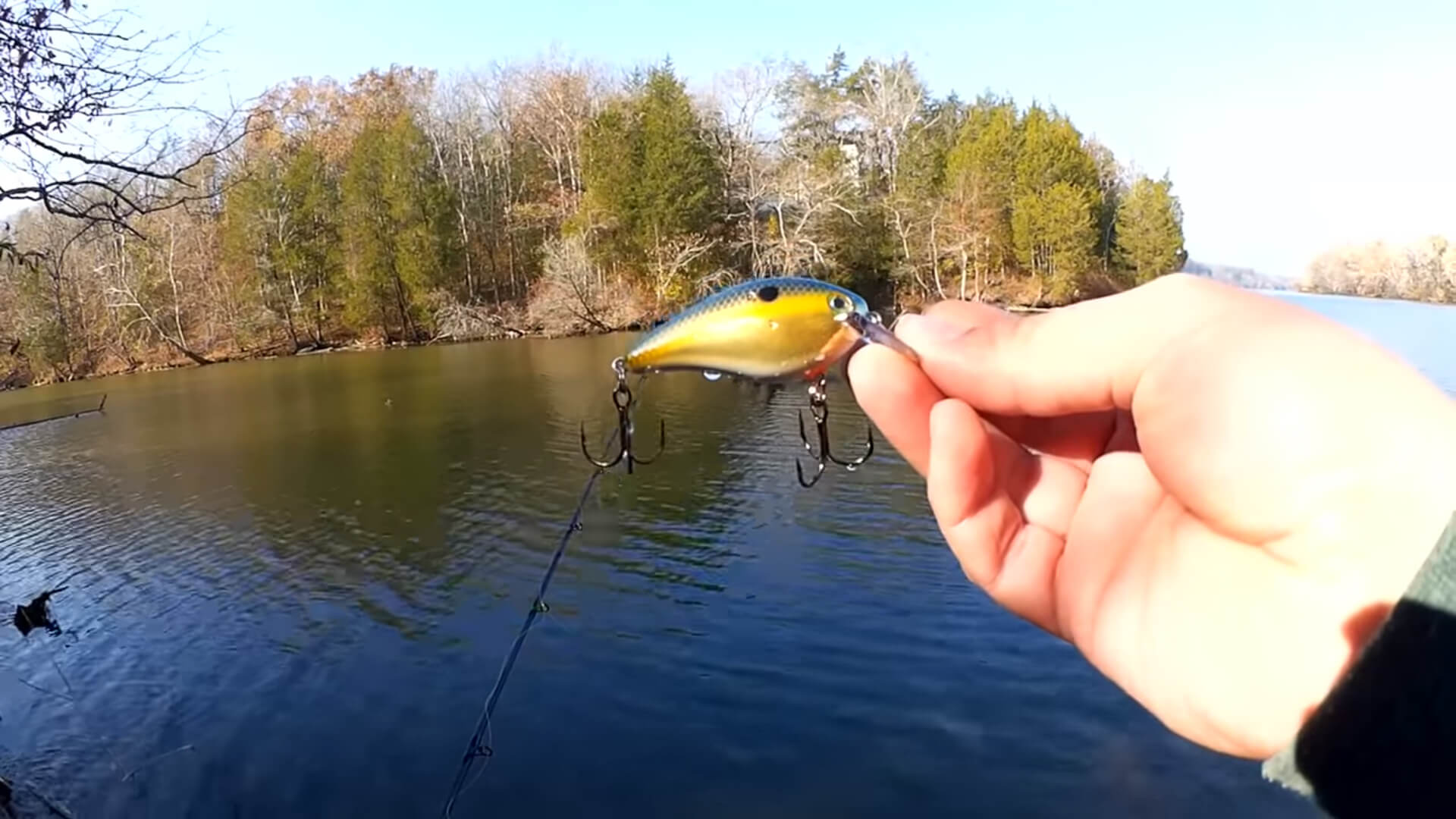 Bass Fishing with a Strike King KVD 1.5 Squarebill Crankbait - Realistic Fishing