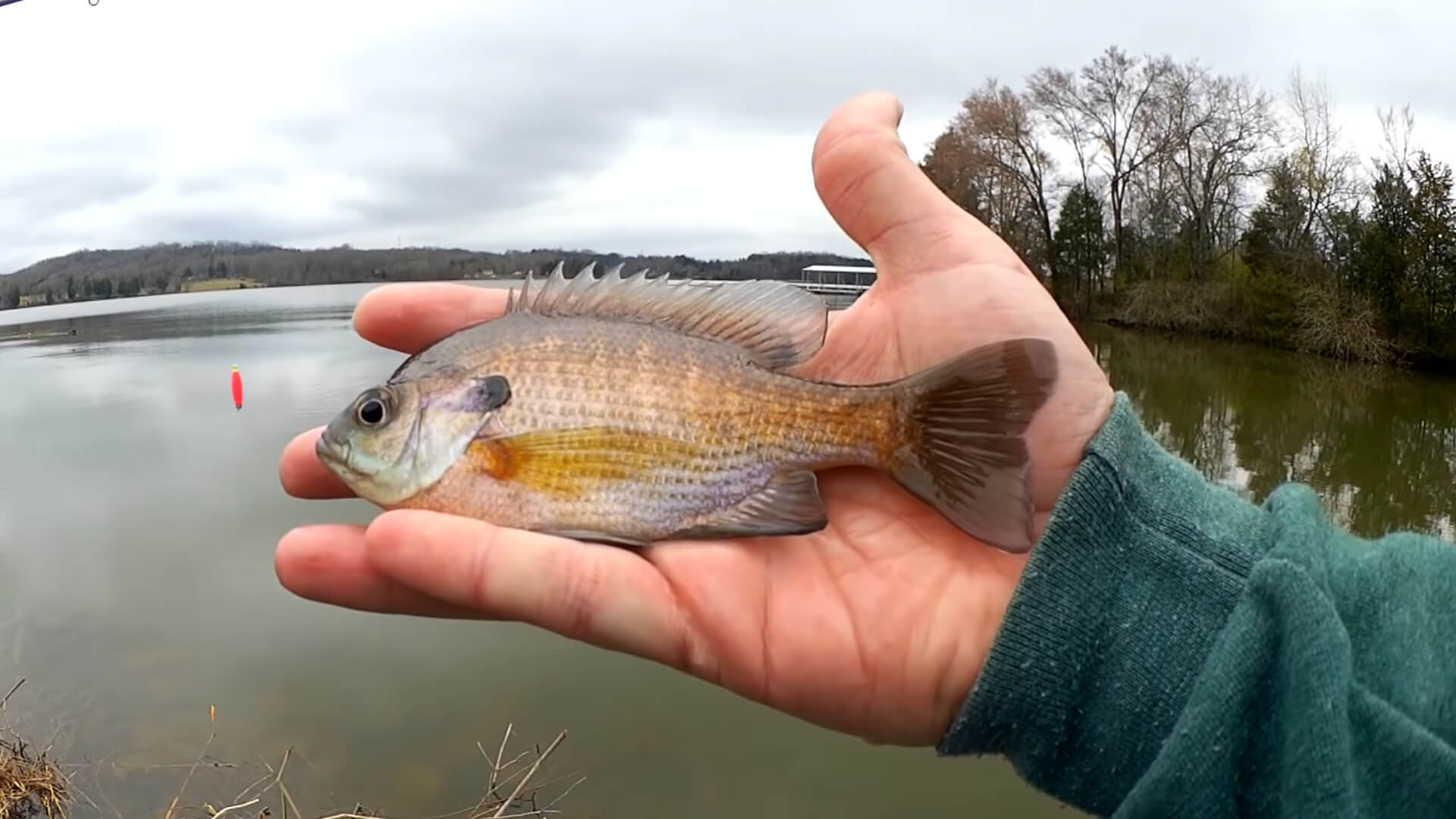Spring Fishing During a Cold Front Tricky Fishing in Tough Conditions - Realistic Fishing